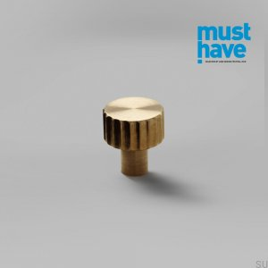 Furniture knob Lexi XS Gold Brass Brushed